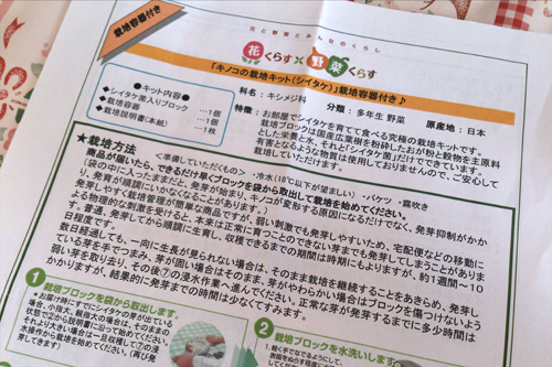 「キノコの栽培キット(シイタケ)」栽培容器付き